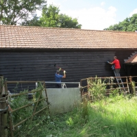 2016-07-17 Bridges Farm 14