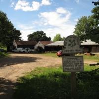 2016-07-17 Bridges Farm 22