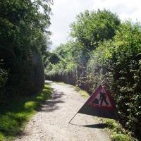 SNTV Task - Ickworth Park