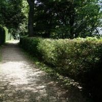 2017-08-13 Ickworth Park 14
