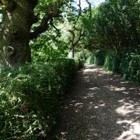 2017-08-13 Ickworth Park 15
