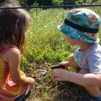 2017-08-27 Ickworth Park 20