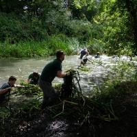 2017-09-10 Flatford Mill 07
