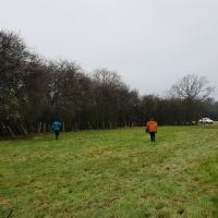 SNTV 2018-03-11 Lower Barn Farm 19
