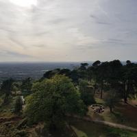 SNTV Surrey Hills 2018-10 41